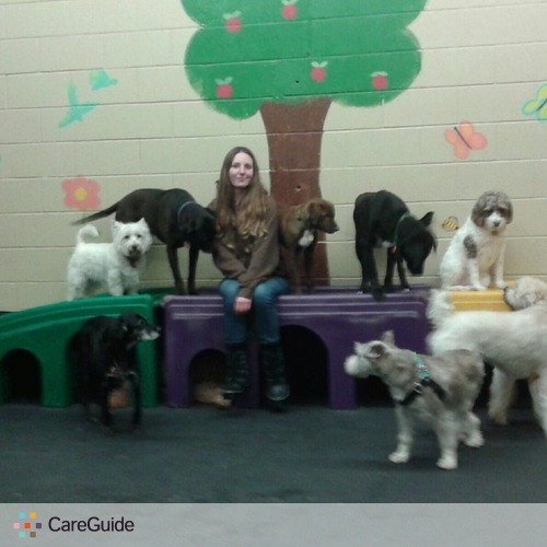 Pet Care Provider Emilee MacDonald's Profile Picture