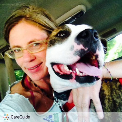 Pet Care Provider Karen Korn's Profile Picture