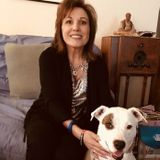 Looking For a Pet Care Opportunity in La Quinta