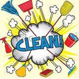 Skilled Cleaner for Your Home