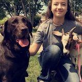 Animal Caretaker Interested In Job Opportunities in Warrenton