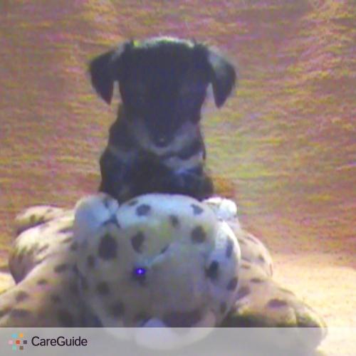 Pet Care Provider Melanie M's Profile Picture