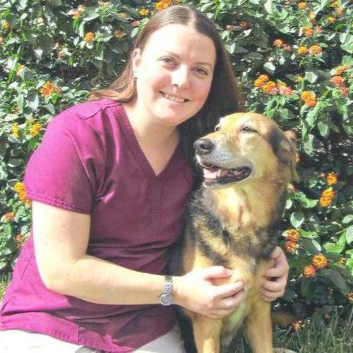 Pet Care Provider Sarah W Gallery Image 2