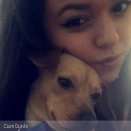 Pet Care Provider Angelica Flores's Profile Picture