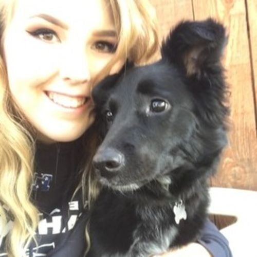 Pet Care Provider Liz Scharmann Gallery Image 1