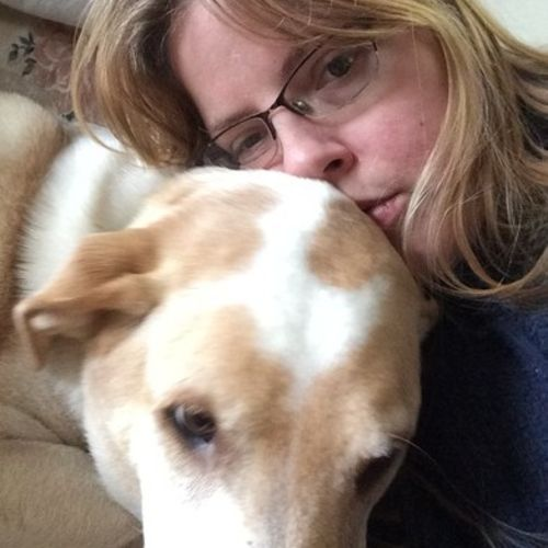 House Sitter Provider Dacey D's Profile Picture