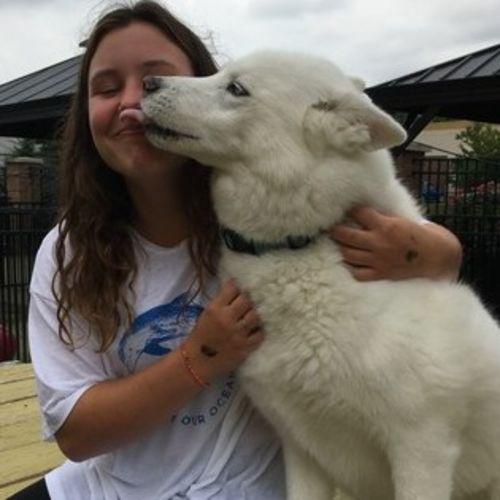 Pet Care Provider Audrey S's Profile Picture