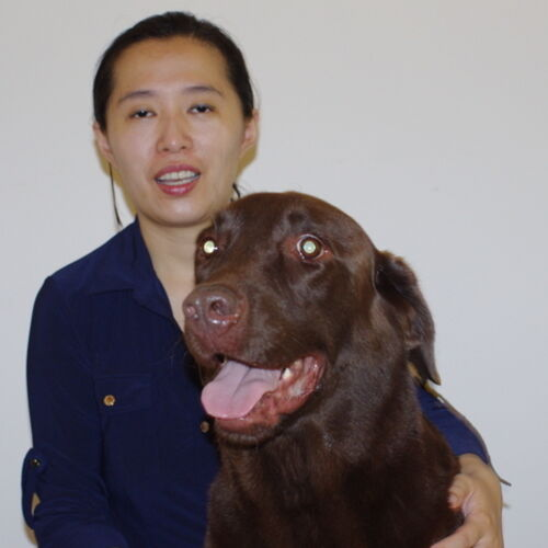 Responsible and Caring Pet Sitter in North York/Toronto