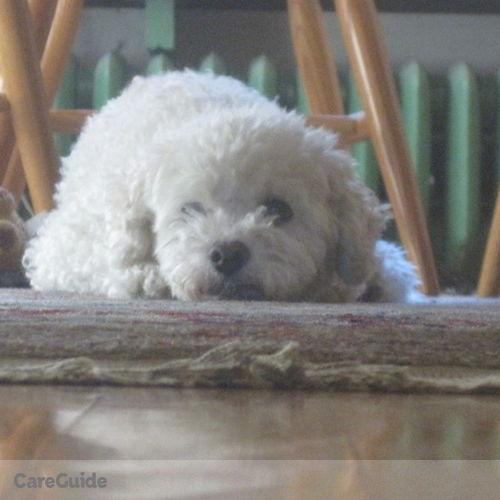Pet Care Provider John McCool's Profile Picture