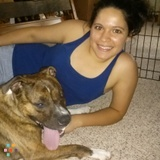Dog Walker, Pet Sitter in Saint Louis