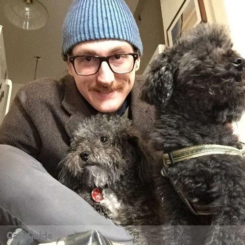 Pet Care Provider Steve B's Profile Picture