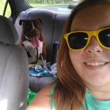 Available: Knowledgeable Pet Sitter in Palatka/Gainesville FL