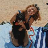 Great Dog Trainer in Belleview