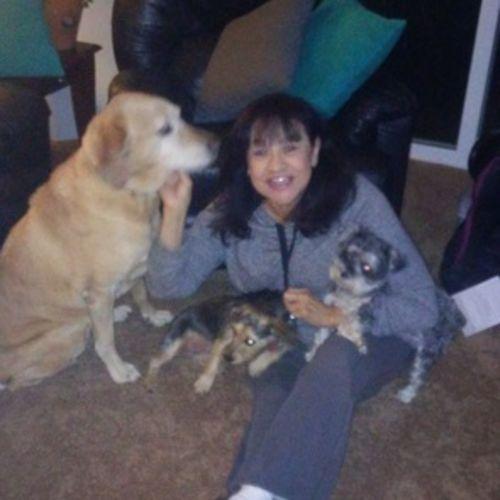 Pet Care Provider Vera B's Profile Picture