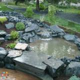 Landscaper in Circle Pines