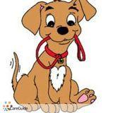 Dog Walker in San Rafael