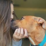 Interviewing For Summerville Pet Sitter Opportunity