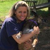 Dog Walking, Senior ,Special Needs , dogs capable of medicating, feeding, Sub Q fluids if pet has Kidney failure etc..