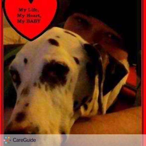 Pet Care Provider Anna Morse's Profile Picture