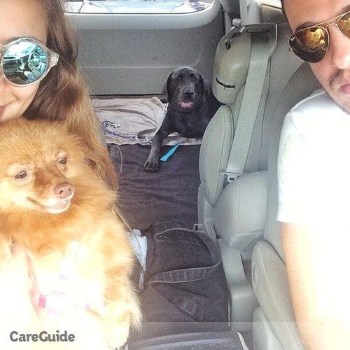 Pet Care Provider Asli Alp's Profile Picture