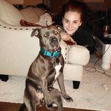 Professional dog trainer/animal lover