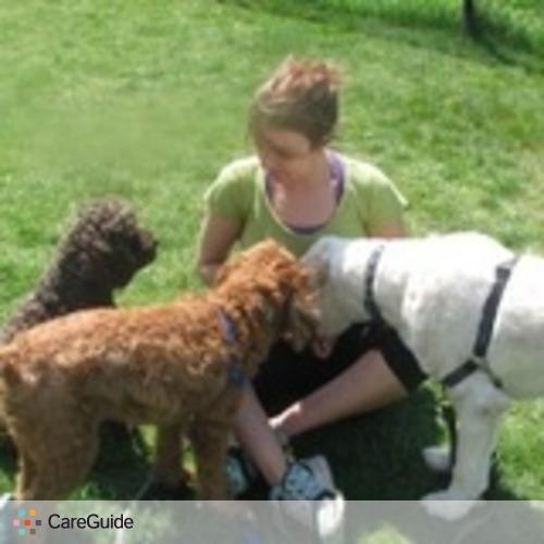 Pet Care Provider Sam M's Profile Picture