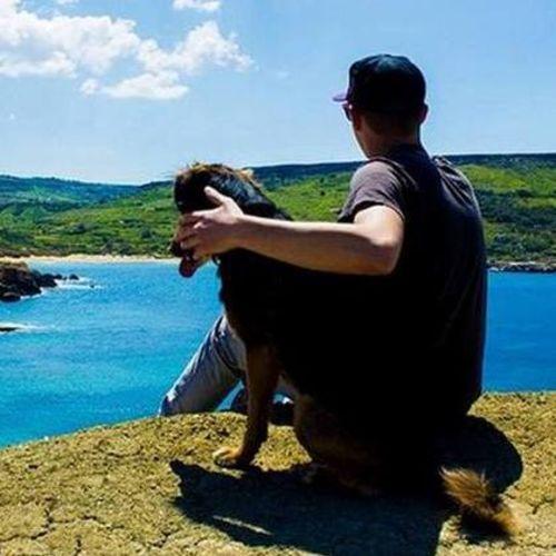 Pet Care Provider Dennis M's Profile Picture