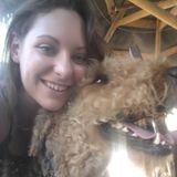 Friendly and energetic animal lover in Gilbert. Feeding, walking, training, and basic grooming