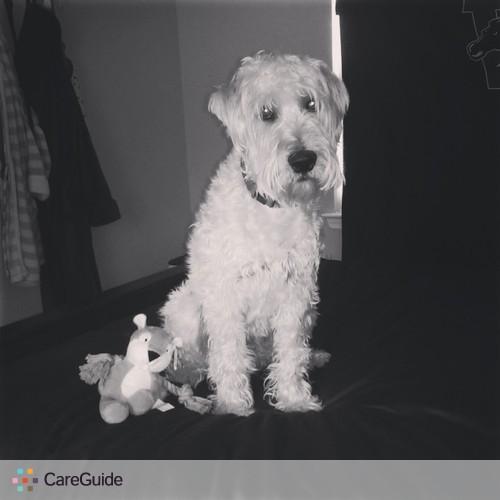 Pet Care Job Hannah Gillispie's Profile Picture