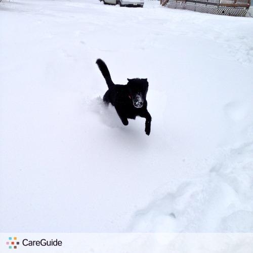 Pet Care Provider Taylor Walton's Profile Picture
