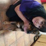 Seeking a Dog/Cat Sitting Job in or near Round Rock
