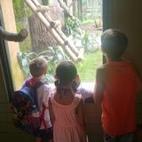 Stay & Play Home Childcare - Spaces Available Oshawa, Ontario Sitter