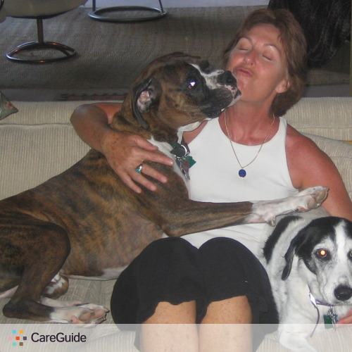 Pet Care Provider Carolyn Weber's Profile Picture