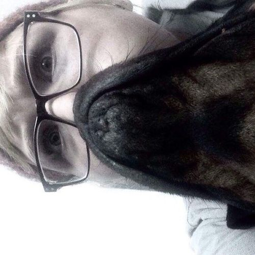 Pet Care Provider Amy T's Profile Picture