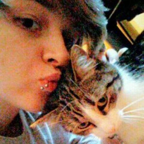 Pet Care Provider Virgil S's Profile Picture