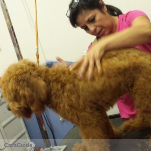 Pet Care Provider Y Giovanna Puebla's Profile Picture
