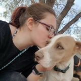 North Phoenix animal caregiver looking to help!