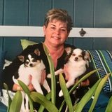 I'm a former dog trainer and behaviorist.
