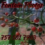 Fontain Photos we don't take pictures we make memories you're sure to love