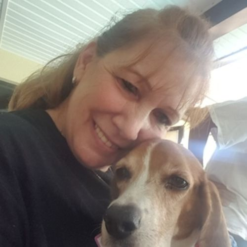 House Sitter Provider Mary Paul's Profile Picture
