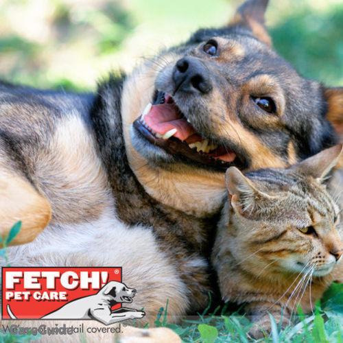Pet Care Provider Nehana Dew's Profile Picture