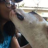Responsible & caring animal lover willing to take lead in helping out :)