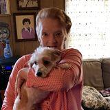 Available: Skillful Pet Care Provider in Alpena, Michigan