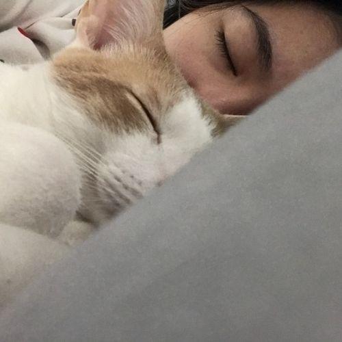 Pet Care Provider Ariel W's Profile Picture