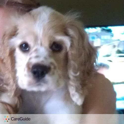 Pet Care Provider Kelly Travis's Profile Picture