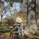 Dog Walker, Pet Sitter in Decatur