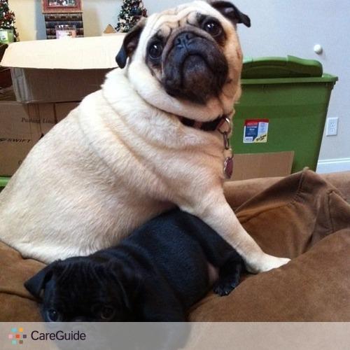 Pet Care Job Merrideth Ziesse's Profile Picture