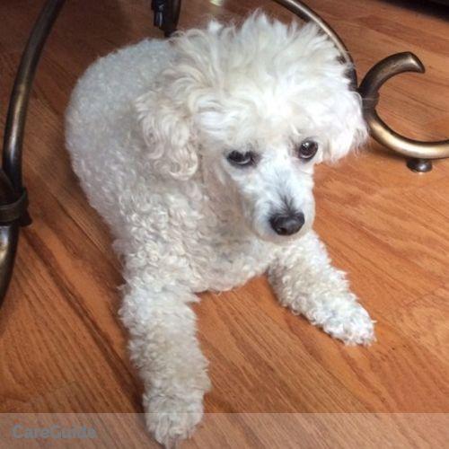 Pet Care Provider Monique Neville's Profile Picture