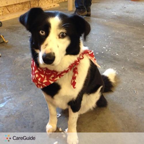 Pet Care Provider Kara Gardiner's Profile Picture