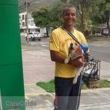 Dog Walker in Miami Beach